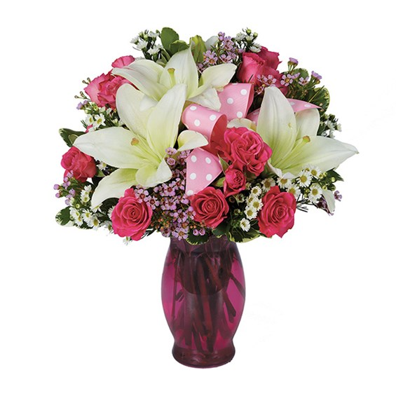Mozart Die Zauberflote Dvd La Scala also David Tennant furthermore Dracena Marginata likewise NEW CAST FOR LEGALLY BLONDE THE MUSICAL further . on dance gift basket