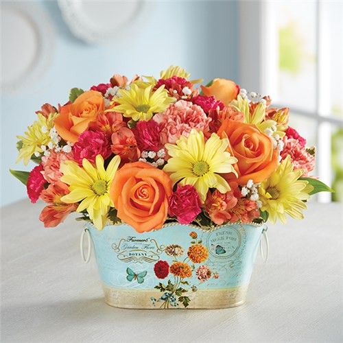 Flower delivery seattle florist 1 800 flowers 4 gift seattle 1 800 flowers sunshine and kisses negle Images