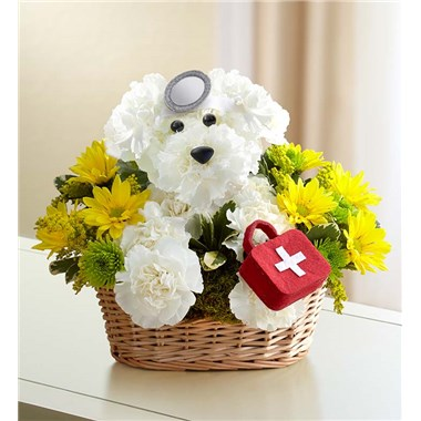 1 800 Flowers Doggie Howser Md 1 800 Flowers 4 Gift Seattle