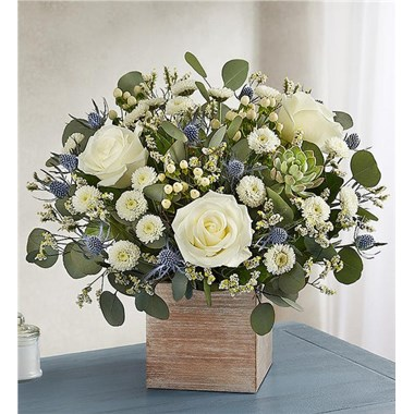 1 800 Flowers Country Pearl Succulent Bouquet Seattle Wa
